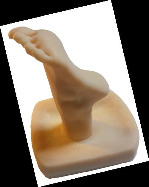 dildo anal höschen zur seite